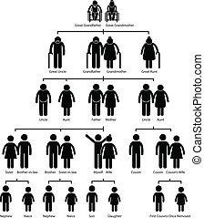 ábra, fa, család, genealógia
