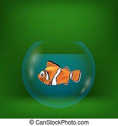 ábra, fish, tenger, bohóckodik, színes