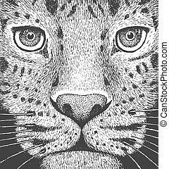ábra, metszés, leopárd