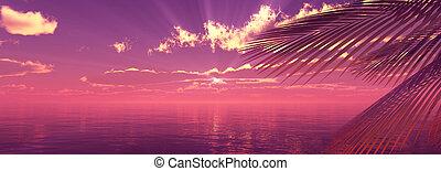 ábra, tenger, pálma, táj, napnyugta