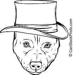 ábra, vektor, tervezés, pitbull, fehér, rajzol, black hím, kalap