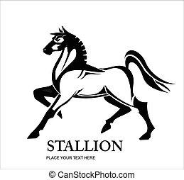 álló, csődör, ló, ló
