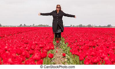 álló, tulipánok, nő, mező