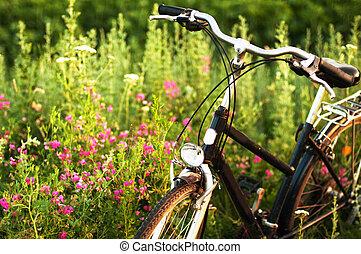 állandó, road., bekapcsol, visszaverődés, bike., parkolt, bicikli, szüret