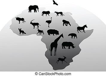 állat, árnykép