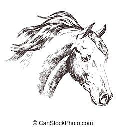 állat, hullámzás, ló, white arc, sörény, wind., fej, vektor, elszigetelt, rajz, style., ábra, skicc, nagyszerű, gyakorlatias, freehand, tanya, belföldi, háttér., monochrom, szüret