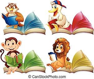állatok, előjegyez, felolvasás, vad