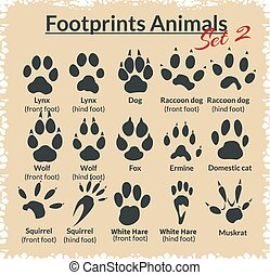 állatok, lábnyomok, vektor, -, set.