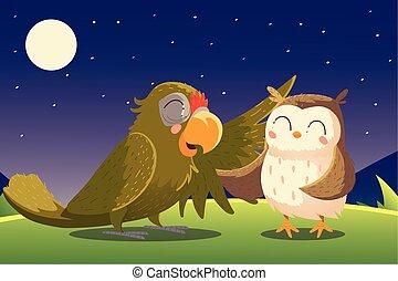 állatok, papagáj, karikatúra, bagoly, éjszaka, természet