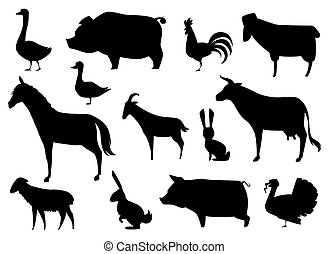 állatok, tanya, elszigetelt, körvonal, vektor, white.