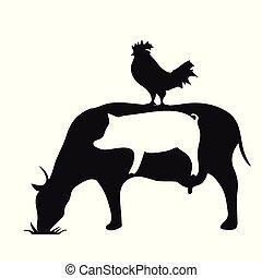 állatok, tehén, tanya, jelkép, disznó, fekete, árnykép, fehér, csirke