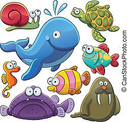 állatok, tenger, gyűjtés