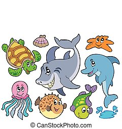 állatok, tenger, gyűjtés, boldog
