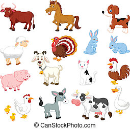 állhatatos, állat, gyűjtés, tanya