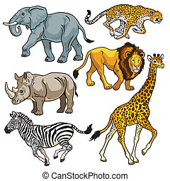 állhatatos, állatok, afrikai, szavanna
