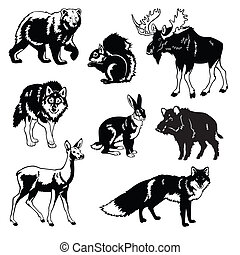 állhatatos, állatok, vad