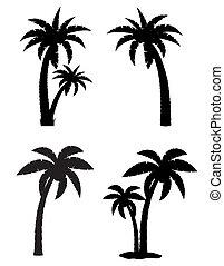 állhatatos, árnykép, ikonok, fa, elszigetelt, ábra, tropikus, vektor, black háttér, pálma, fehér