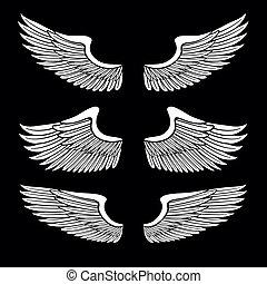 állhatatos, angyal, elszigetelt, fekete, fehér, kasfogó