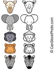 állhatatos, animals., vektor, vad, állatkert, vagy