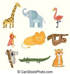 állhatatos, böllér, papagáj, krokodil, tervezés, tiger., wildlife., gyerekek, koala, flamingó, lustaság, állat, lakás, könyv, elefánt, birds., színezett, levelezőlap, oroszlán, vektor, zsiráf, hord, vagy