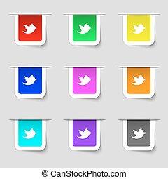 állhatatos, csicsergés, cégtábla., modern, üzenet, retweet, média, többszínű, elnevezés, vektor, társadalmi, ikon, -e, design.