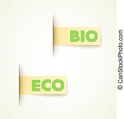 állhatatos, eco, elnevezés, két, dolgozat, tervezés