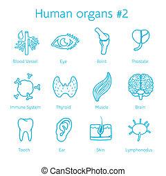 állhatatos, ikonok, orangs, vektor, emberi, körvonal