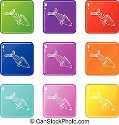 állhatatos, ikonok, szín, fish, gyűjtés, 9
