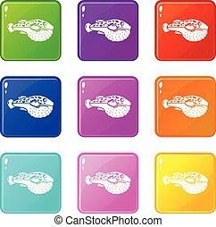 állhatatos, ikonok, szín, fish, gyűjtés, megmérgez, 9
