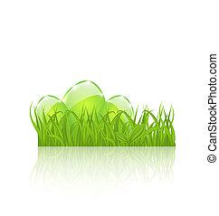 állhatatos, ikra, elszigetelt, zöld háttér, fehér, fű, húsvét