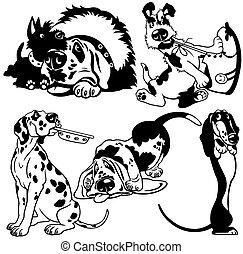 állhatatos, karikatúra, kutyák