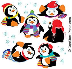 állhatatos, karikatúra, pingvin