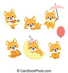 állhatatos, kutya, shiba, karikatúra, inu, vector.