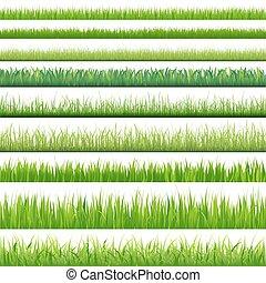 állhatatos, nagy, fű