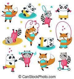 állhatatos, róka, vektor, állóképesség, mosómedve, panda, ikon