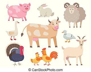 állhatatos, sheep, disznó, kakas, liba, design., elszigetelt, háttér., fehér, lakás, goat, tyúk, tehén, tanya, gyűjtés, beleértve, kacsa, pulyka, üregi nyúl, karikatúra, állatok, vektor