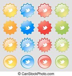 állhatatos, színes, 16, nagy, cégtábla., modern, üzenet, retweet, média, -e, gombok, vektor, társadalmi, ikon, csicsergés, design.
