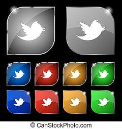állhatatos, színes, tíz, csicsergés, glare., üzenet, média, retweet, gombok, vektor, társadalmi, cégtábla., ikon