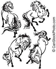 állhatatos, tetovál, lovak
