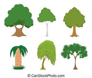 állhatatos, zöld fa