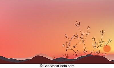 árnykép, ég terep, napnyugta, fű, félhomály, táj