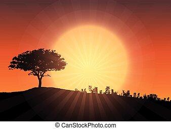árnykép, fa, ég, ellen, napnyugta, 2804