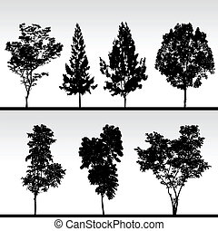 árnykép, fekete, fa
