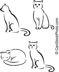 árnykép, macska