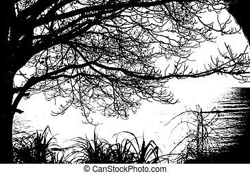 árnykép, szüret, fa, vektor, sea., egyedül