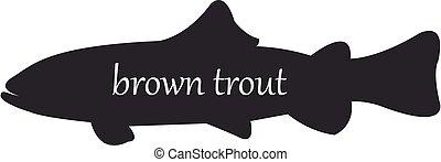 árnykép, vagy, háttér, fish, trutta, barna, fehér, pisztráng, fekete, salmo