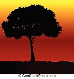 árnykép, vektor, fekete, fa