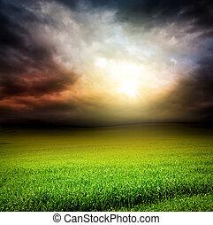 ég, fű nap, zöld csillogó, sötét, mező