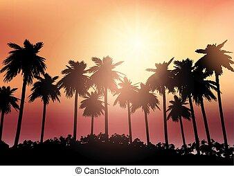 ég, fa, ellen, körvonal, pálma, napnyugta