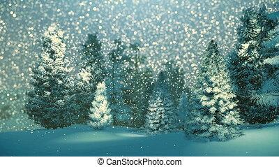 éjszaka, hóesés, havas, erdő, fenyő